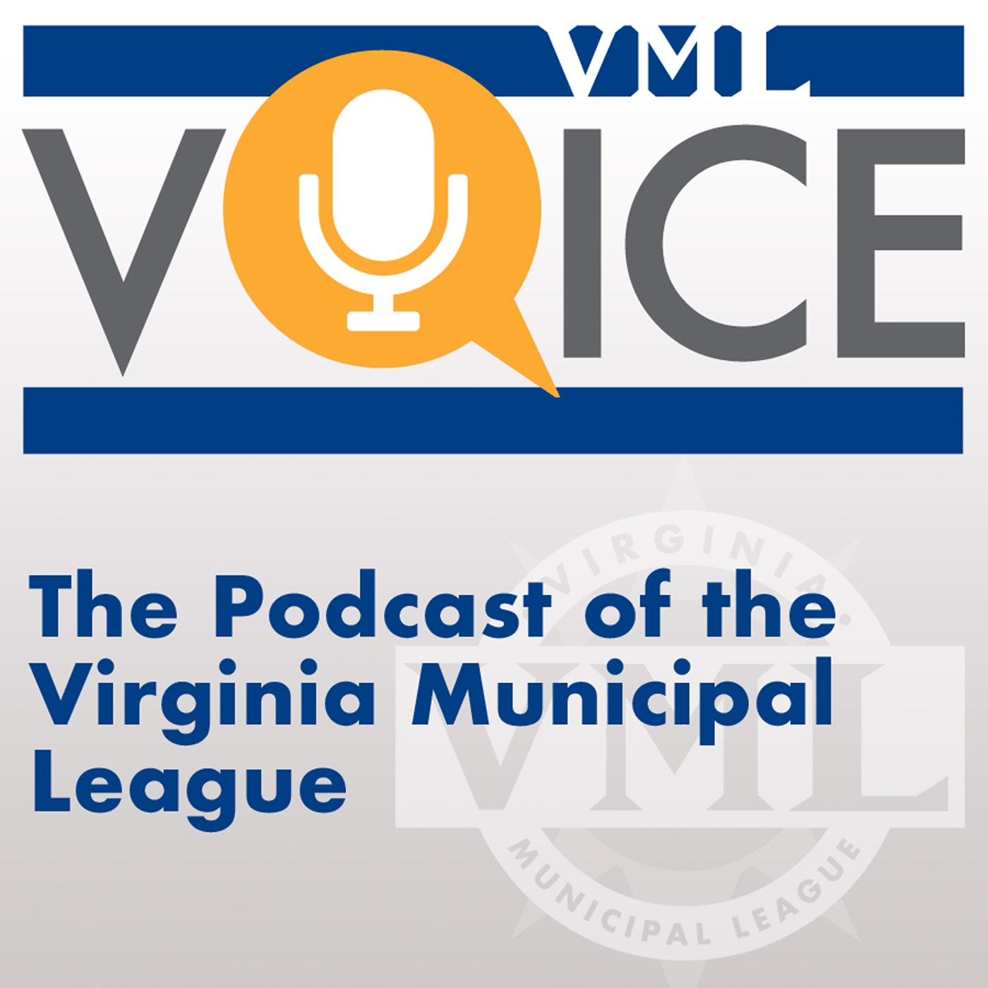 VML Voice